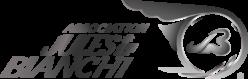 Association Jules Bianchi #17